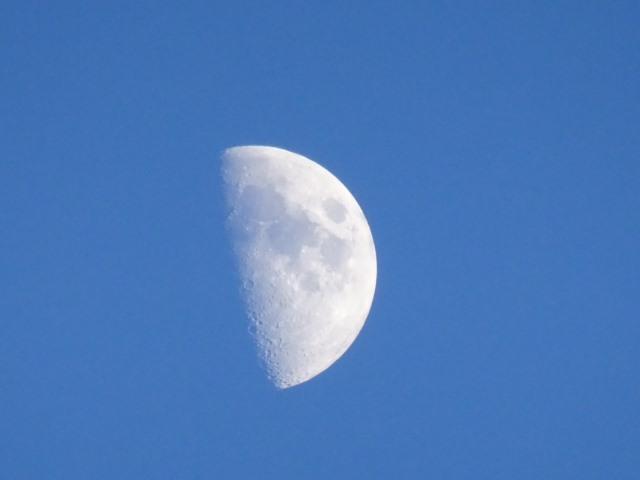 新月から満月になるまでの約14日間の月を上弦の月といいます。